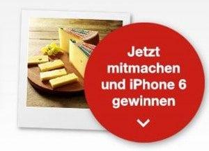 Schweizer Käse Wettbewerb Schweiz